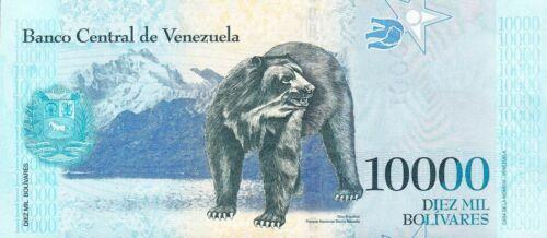 18.08.2016 Rodrigues//Black Bear//p98 Venezuela 10000 Bolívares