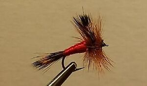 Dry Fly White Winged Red Ant Trout 1 Dozen