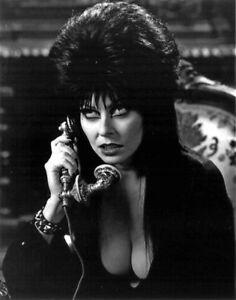 Cassandra-Peterson-aka-Elvira-Mistress-of-the-Dark-UNSIGNED-photograph-M8878