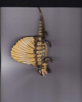 Toys & Hobbies Dimetrodon Reptile Figure Limpid In Sight Animals & Nature