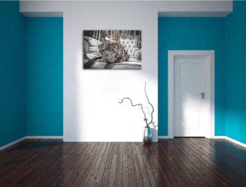 Hund mit Krone auf Sessel Leinwandbild Wanddeko Kunstdruck