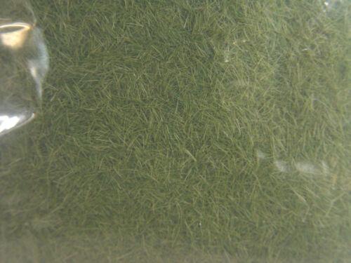 Grasfaser 4 mm Woodland 42 g FS618  #E mittelgrün Preis1kg=€126,19