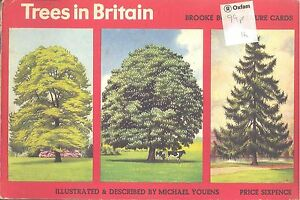 Brooke Bond  Trees in Britain blue back  Set in album - <span itemprop=availableAtOrFrom>Matlock, United Kingdom</span> - Open immediately on receipt. Inform seller at once if the item does not match the description in the listing. Return within seven days for full refund Most purchases from business sellers - Matlock, United Kingdom