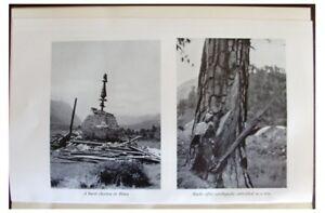 1953-Kingdon-Ward-ASSAM-EARTHQUAKE-OF-1950-06