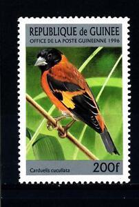 GUINEA-1996-Uccelli