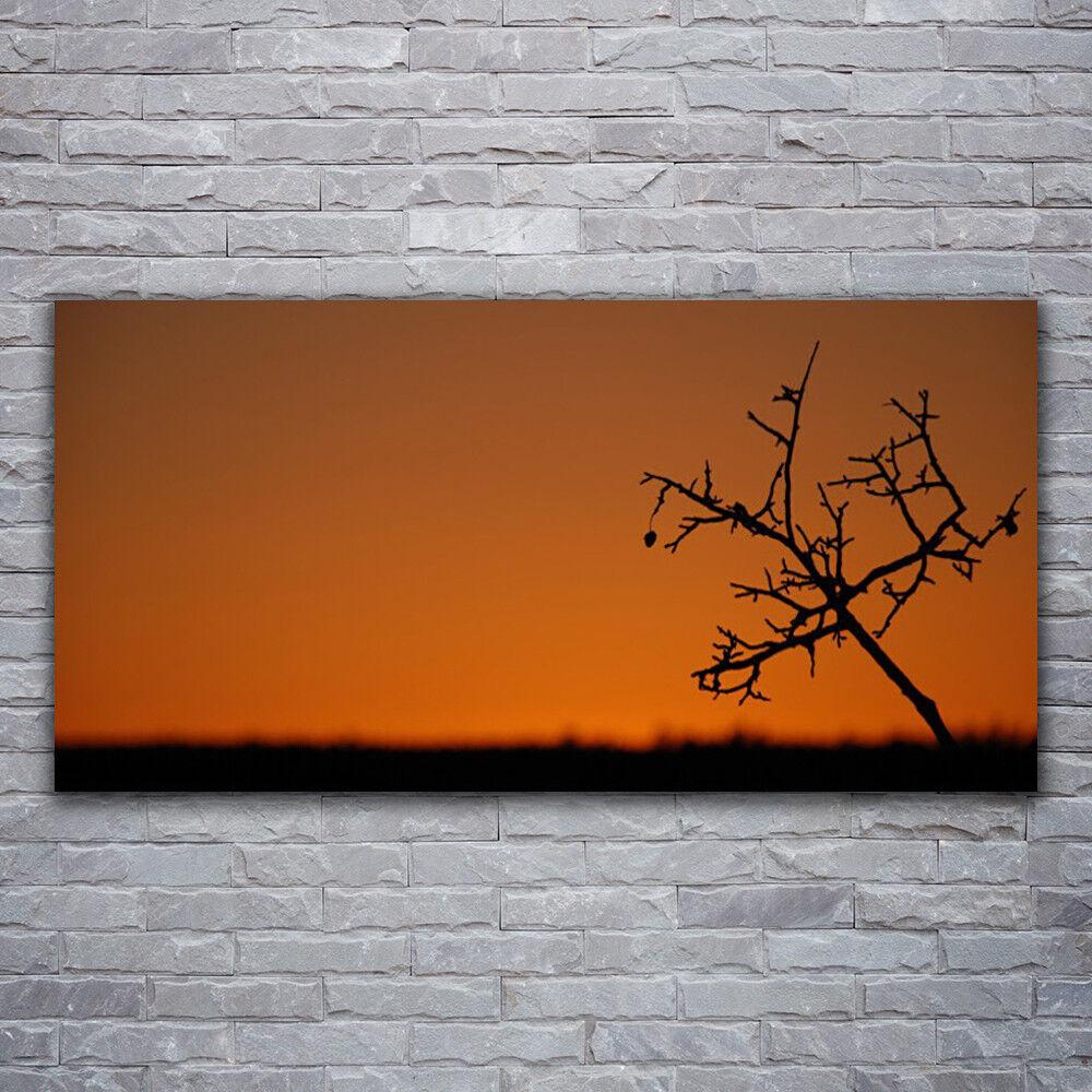 Photo sur toile Tableau Image Impression 120x60 Art Arbre