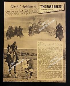 Vintage-SPECIAL-APPLAUSE-Issue-THE-RARE-BREED-1966-Stewart-O-039-Hara-MPAA-Mailer