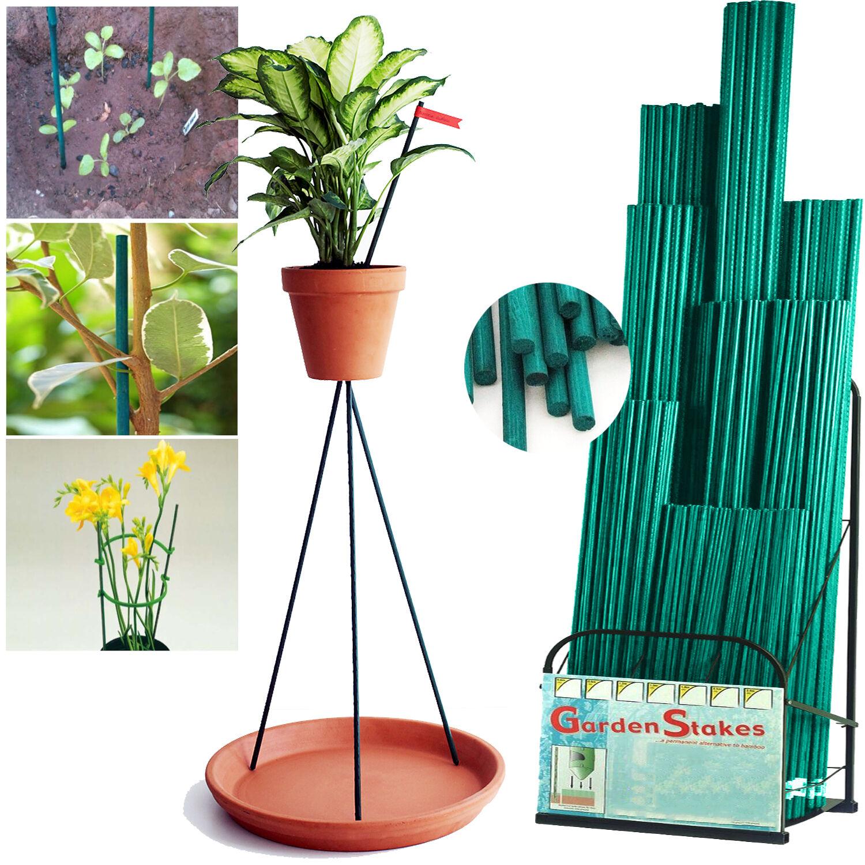 BAMBOO verde Split Canne Sostegno bastoncini per piante da giardino Lampadina Lily Fiore Heavy Duty