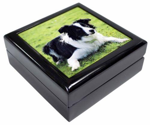 AD-CO69JB Border Collie Dog Keepsake//Jewellery Box Christmas Gift