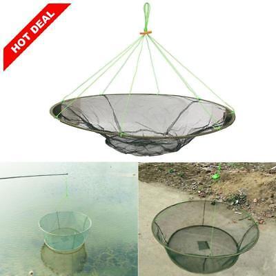 """31/"""" Large Prawn Bait Crab Shrimp Net 80cm Drop Landing Fishing Net Harbour Pond"""