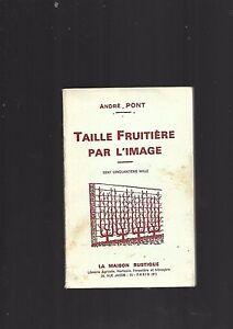 Sacapuntas-fruta-por-l-039-imagen-Andre-Puente-De-La-Maison-Rustico-REF-E36