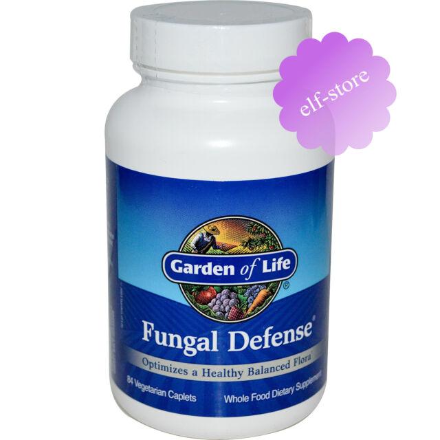 Garden of Life, Fungal Defense, 84 Veggie Caplets Body Supplement