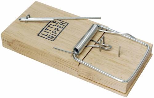 12 Pack Pest Stop Little Nipper bois traditionnelle Piège à souris en bois rapide Killer
