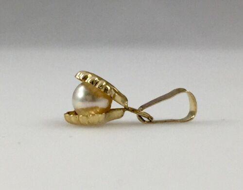 Sweet!! véritable Akoya Cultured Pearl en coquille 14kt Gold Charm//Pendentif nouveau SM