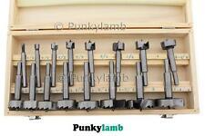 16 pezzi di legno noioso lavoro Forstner Trapano Strumento Set Kit in cassetta di legno NUOVO