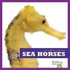 Sea Horses by Cari Meister (Hardback, 2012)