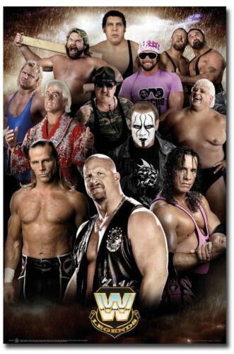 "Wrestling WWE Legends Fridge Magnets Size 2.5/"" x 3.7/"""