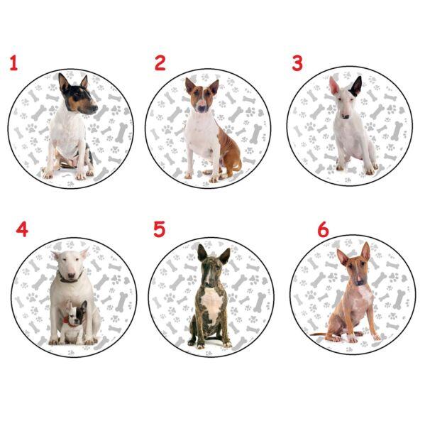 Bescheiden Bull Terrier Bone Paws Mini Spiegel Gutes Renommee Auf Der Ganzen Welt