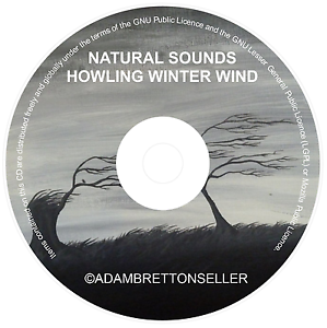 HOWLING-WINTER-WIND-CD-RELAXATION-STRESS-SLEEP-AID-CALM-NATURE-NATURAL-SOUNDS