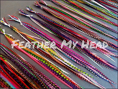25 Feather Hair Extensions Medium Length 7-9 In (18-23cm) Variety Mix