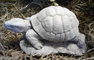 Latex-turtle-on-base-mold-plaster-cement-mould