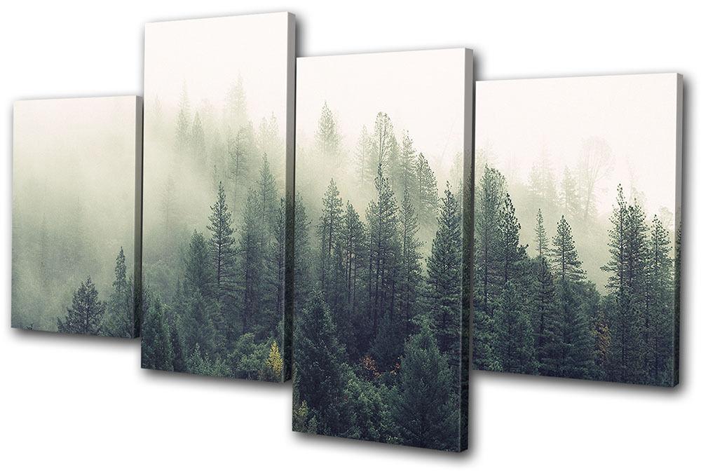 Misty Forest Nature Landscapes MULTI LONA pa rojo  arte arte  Foto impresion d08a75