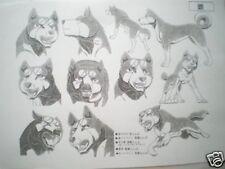 FREE SHIPPING!! Silver Fang Ginga Densetsu Weed Anime Handout Copy 34piece
