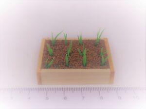 Escala 1:12 Caja de Madera de puerro plantones tumdee Casa De Muñecas Jardín vegetales