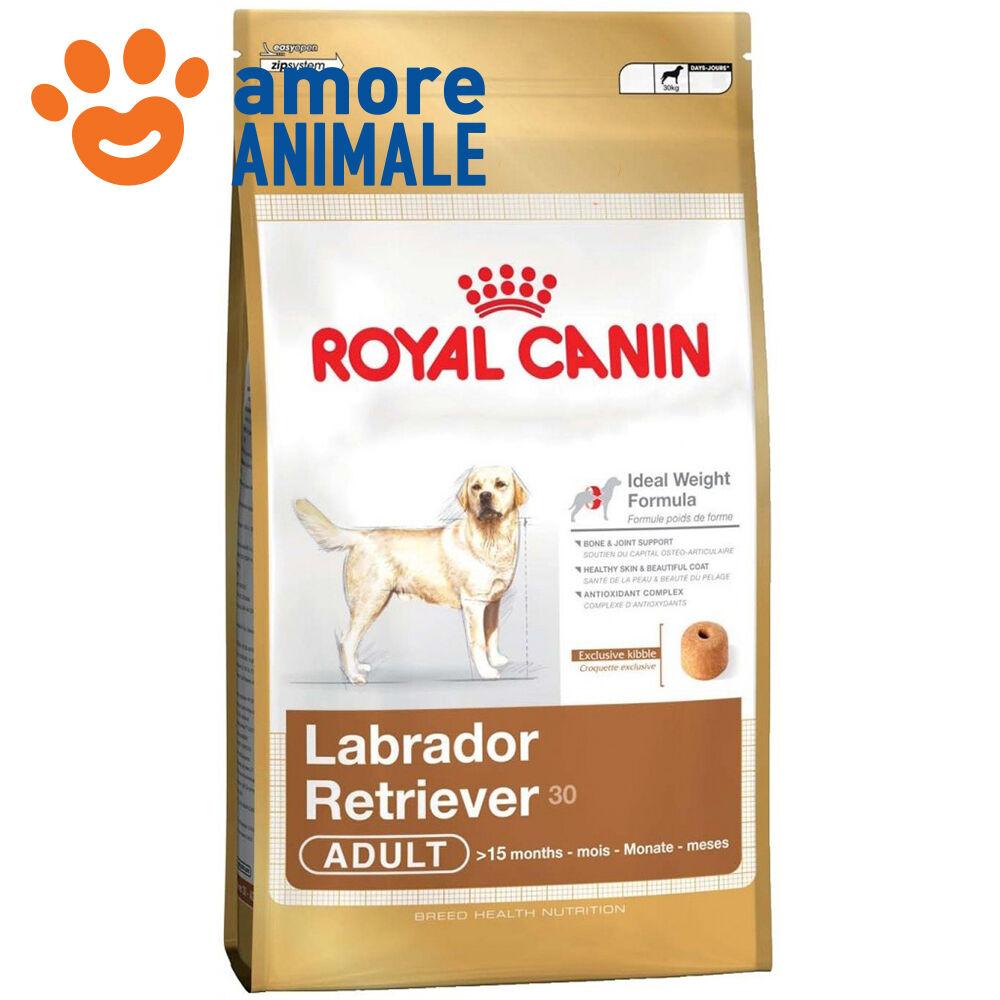 Royal canin Labrador Retriever Adulto Adulto Adulto 12 kg  Crocchette per Labrador Adulto 495db5