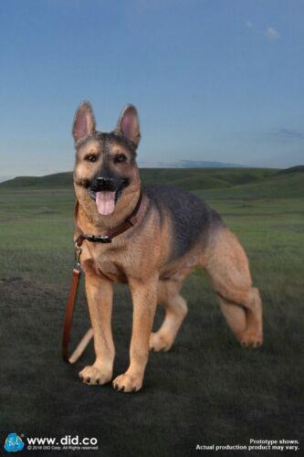 DRAGON IN DREAMS DID 3-R 1/6 SCALE ANIMAL SERIES DOG GERMAN SHEPHERD AS003