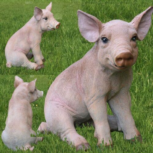 Gartenfigur Schwein Ferkel 23cm sitzend Haus Garten Deko lebensechte Figur #7854