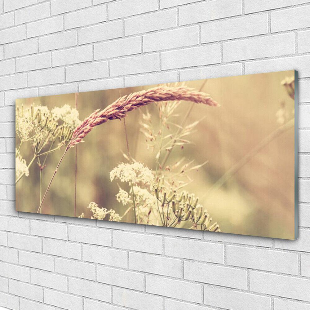Impression sur verre Wall Art 125x50 Photo Image plantes sauvages Floral