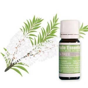 Huiles-essentielles-Tea-Tree-10-ml-Pure-et-naturelle-HECT-par-la-vie-en-zen