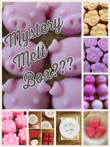 Mystery Wax Melts Box Soy Wax Ideal Gift Natural Wax Uk Seller Ebay
