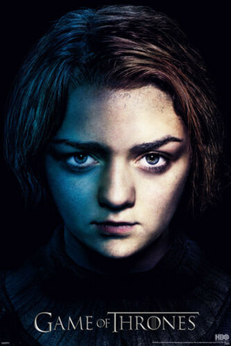 Game of thrones season 3 Arya Poster Daughter Lord Eddard Direwolf Never Hung