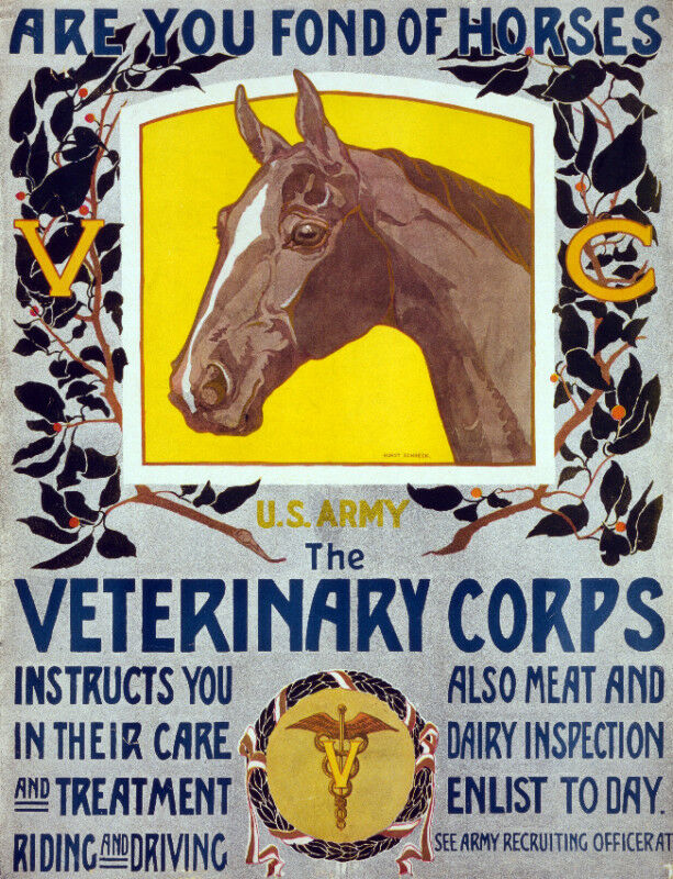 Vintage POSTER. Veterinary Corp. Room Art Decor.House Home decoration.1054