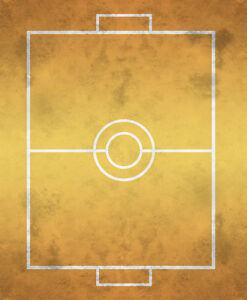 003 Pokemon Battle Field Stadium 2 Players Custom Designed