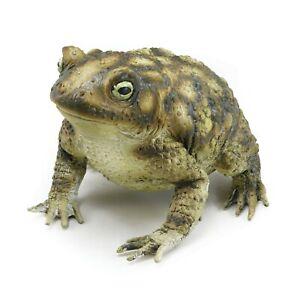 Halloween-Fete-Realiste-Caoutchouc-Toad-Grenouille-Deguisement-Animal-Decoration