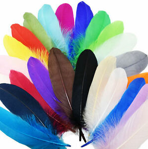 Large-Goose-Quill-Feathers-x-4-Bright-Shades-Crafts-Costumes-etc-6-034-to-7-034