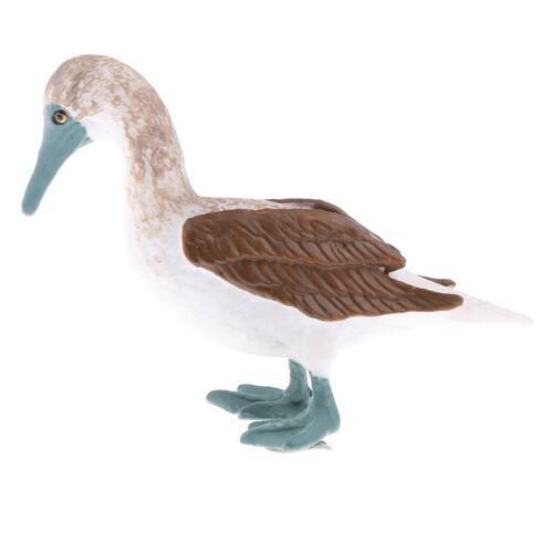 réaliste animal modèle figurine action figures playset kid jouet sula
