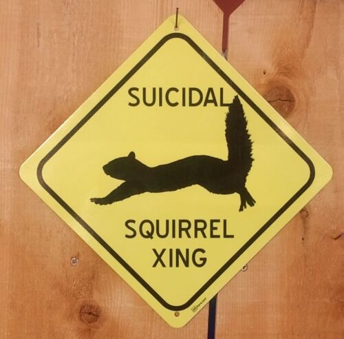 Suicidal Squirrel Xing Symbol Highway Route Sign