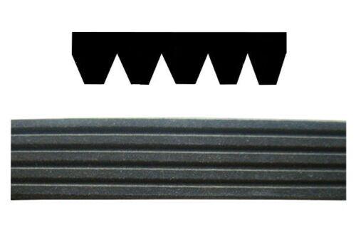OEM Multi-Rib Auxiliary Ribbed Belt Mg Mg Zr 2001-2005 120 105 160