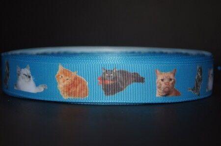 2250 EIGENPRODUKTION Katzenband NEU 22mm Breite Ripsband Webband Borte