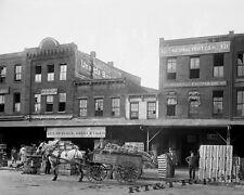 Photograph National Fruit Company  Horse & Wagon Washington DC 1923c  8x10