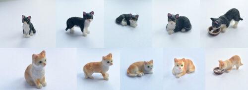 animaux /& animaux Chat choix de couleur /& positions maison de poupées miniature 1.12th