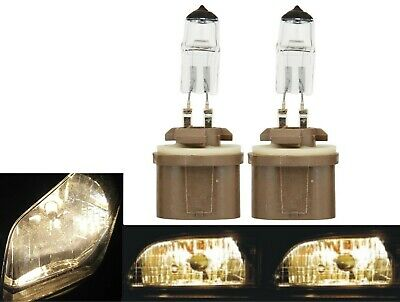 Halogen 892 27W 5000K White Two Bulbs Fog Light Replacement Plug Play Lamp Fit