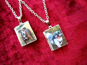 Book-Photo-LOCKET-Necklace-Pendant-Pet-Dog-Horse-Cat-Favourite-Gift-Handmade