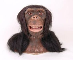 Tête de Chimpanzé Wowwee - Singe télécommandé animé