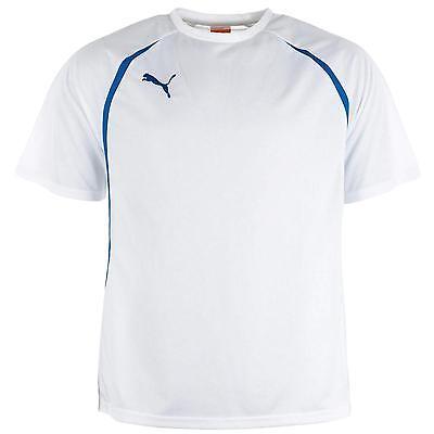 Puma Men's Vencida Ribbed Crew Neck T Shirt White
