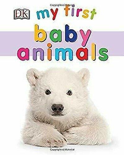 My First Bébé Animals Board Livre Board Livres Dk